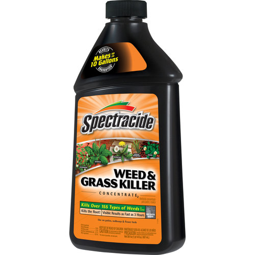 Spectracide Weed & Grass Killer Concentrate, 16 oz