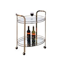 Kingfisher Lane Modern Bar Cart in Champagne