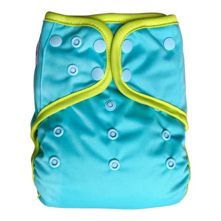 EcoAble Baby Day & Night All-In-One AIO Cloth Diaper with Insert,