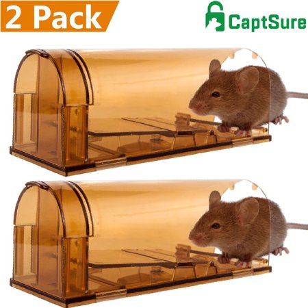 cd5528f44fe CaptSure Humane Smart Mouse Trap, Live Catch and Release Rodent Trap Cage  Box, No Kill/Pain, ...
