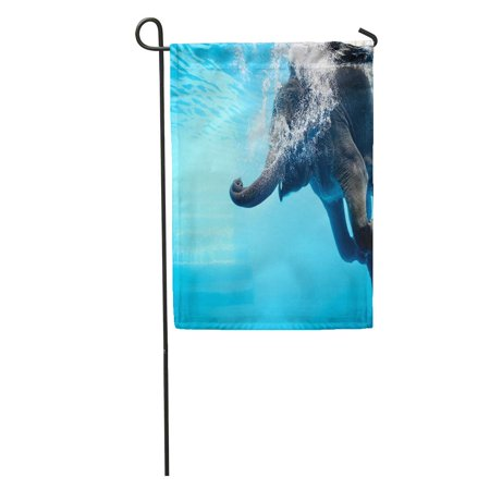 - SIDONKU Elephant Show Swimming and Blow The Bubbles Out of Trunk Underwater Vivid Blue Color in Thailand Garden Flag Decorative Flag House Banner 28x40 inch