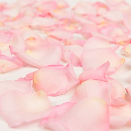 Other Bath & Body Supplies Clever Love Bath And Body Soap Rose Pedals-5 Stems-pink