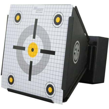 how to make a pellet gun target
