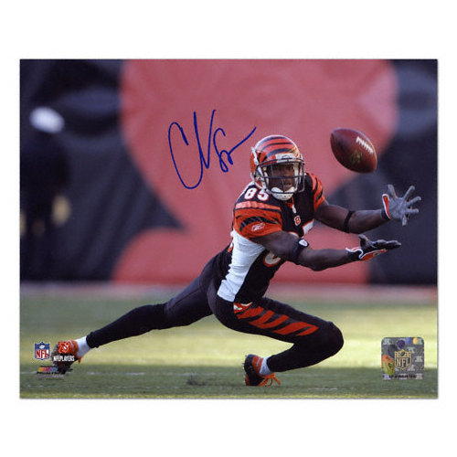NFL - Chad Johnson Cincinnati Bengals - Diving For Catch - Autographed 8x10 Photograph