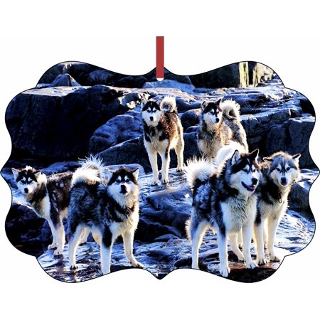 Hanging Tip (Huskies on Snow Tipped Mountains Hanging Benelux Shaped Tree Ornament - (Flat) - Double Sided - Holiday - Christmas - Tm - Made in the USA)