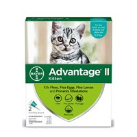 Advantage II Flea Prevention for Kittens, 2 Monthly Treatments
