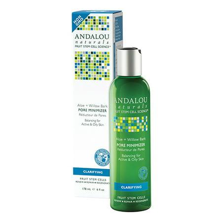9bdb15ac99 Andalou Naturals Aloe Plus Willow Bark Pore Minimizer - 6 Oz
