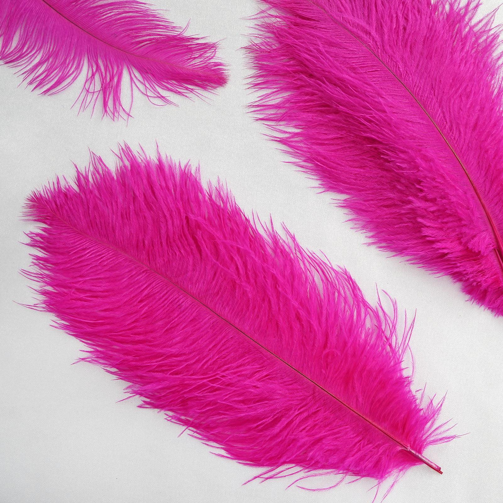 "BalsaCircle 12 pcs 13""-15"" long Authentic Ostrich Feathers - Centerpieces Wedding Party Table Decorations"