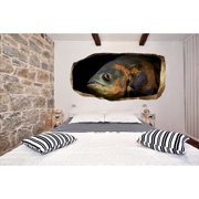 Startonight 3D Mural Wall Art Photo Decor The Fish Know Everything Amazing Dual View Surprise Wall Mural Wallpaper for Bedroom Animals Wall Paper Gift Large 47.24 ?? By 86.61 ??
