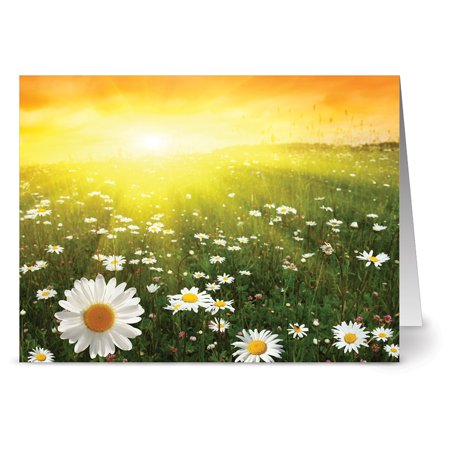 24 Summer Note Cards - Sunny Side Up - Blank Cards - Yellow Envelopes Included