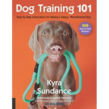 Dog Training 101 - eBook