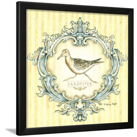 Coastal Life IV Framed Print Wall Art By Sydney Wright