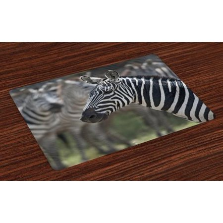 African Placemats Set of 4 Zebra in Serengati National Park Safari Animal in Desert Picture, Washable Fabric Place Mats for Dining Room Kitchen Table Decor,Black White Reseda Green, by Ambesonne](Reseda Park Halloween)
