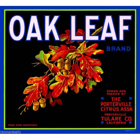 Oak Leaf Plaque (Porterville Tulare County Oak Leaf Orange Citrus Fruit Crate Label Art)