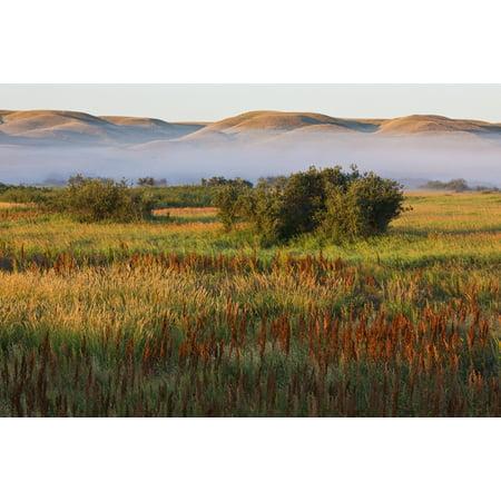 Mist At Sunrise In Frenchman River Valley Of Grasslands National Parksaskatchewan Canada Posterprint