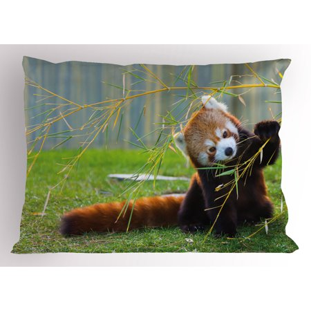 Africa Pillow Sham Cute Red Panda on the Field Playing with Bamboo Branches Native Himalaya Mountains, Decorative Standard Size Printed Pillowcase, 26 X 20 Inches, Brown Red, by Ambesonne