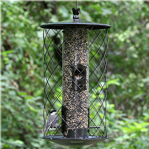 Outdoor Seasons 3 Lb. Capacity Preserve Birdfeeder by woodstream