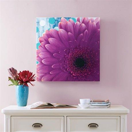 Mi Zone Vibrant Violet Gel Coat Canvas Purple 24x24x15