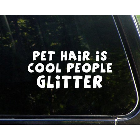 PET Hair Is Cool People Glitter- 8-1/2