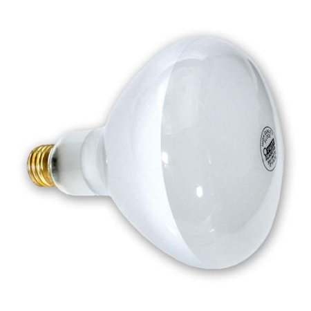 Replacement Swimming Pool Light Bulb - 500W/120V - Walmart.com