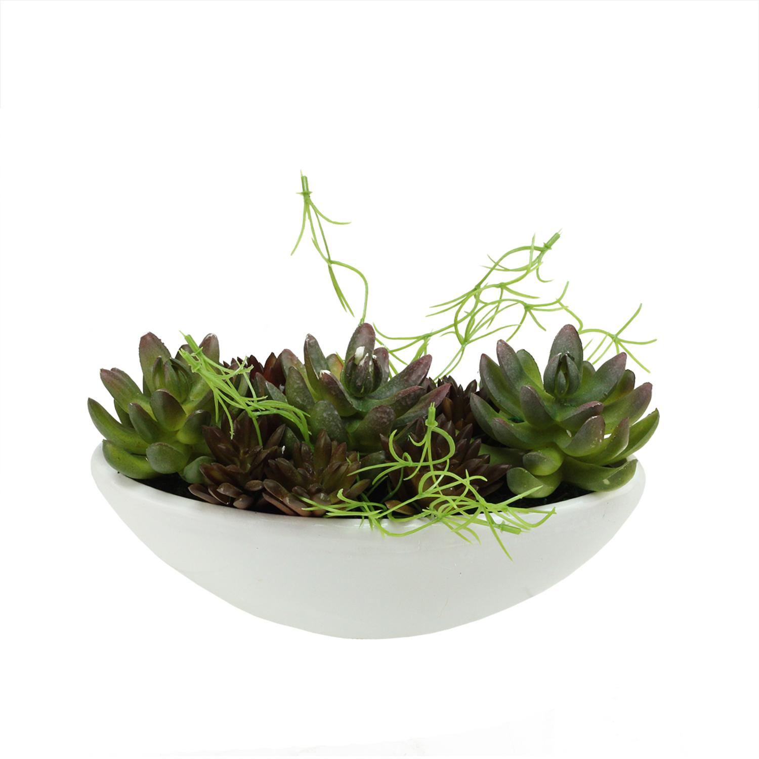 "8.5"" Artificial Mixed Green and Red Succulent Plants in a Decorative White Oval Pot"