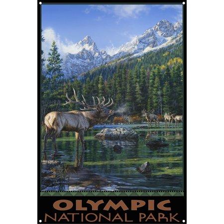 Olympic National Park Elk Challenge Mountains Metal Art Print by Darrell Bush (12