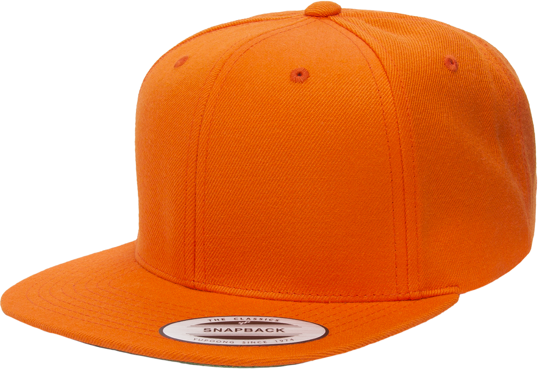 c0bf5ebb848 ... low price the hat pros snapbacks flexfit pro style snapback hats w  green underbill 6089m 89791 ...
