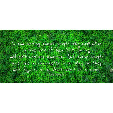 Gay Talese - Famous Quotes Laminated POSTER PRINT 24x20 - I am writing about people who are alive in the city of New York during mid-20th-century America. And these people are like a character in a