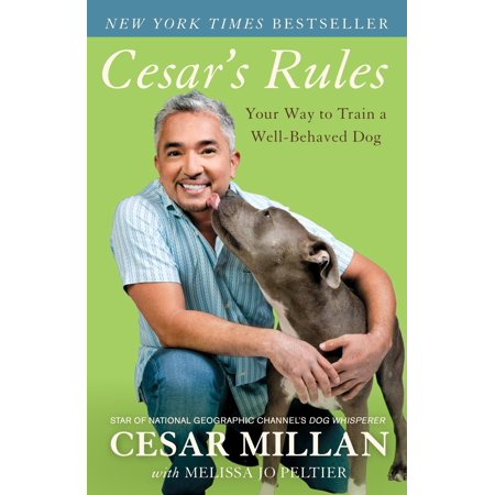 Cesar's Rules : Your Way to Train a Well-Behaved