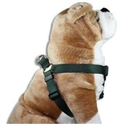 Strapworks SIH-BL34-S 0. 75 W inch Basic Line Step In Harness - Small