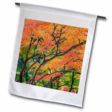 3dRose Oregon, Portland. Maple trees, Japanese Garden - US38 BJA0642 - Jaynes Gallery - Garden Flag, 12 by 18-inch ()