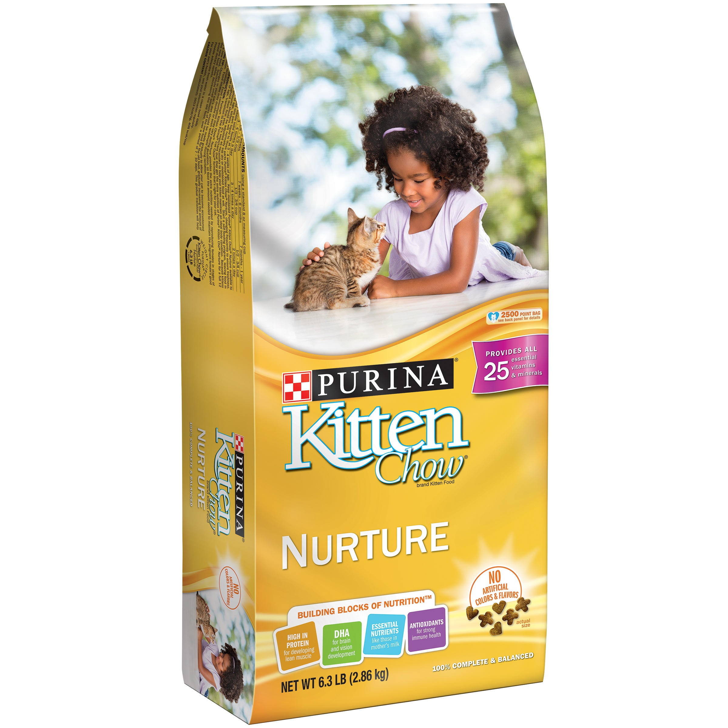 Purina Kitten Chow Nurture Dry Cat Food, 6.3 Lb