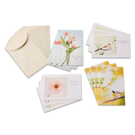 American Greetings 12 Count Assorted Sympathy Cards ()