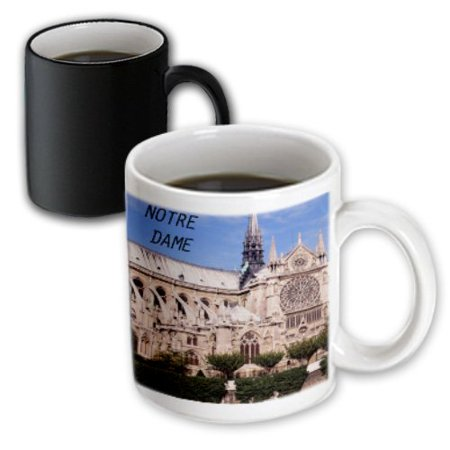 3dRose Notre Dame, Magic Transforming Mug, 11oz - Notre Dame Party Supplies