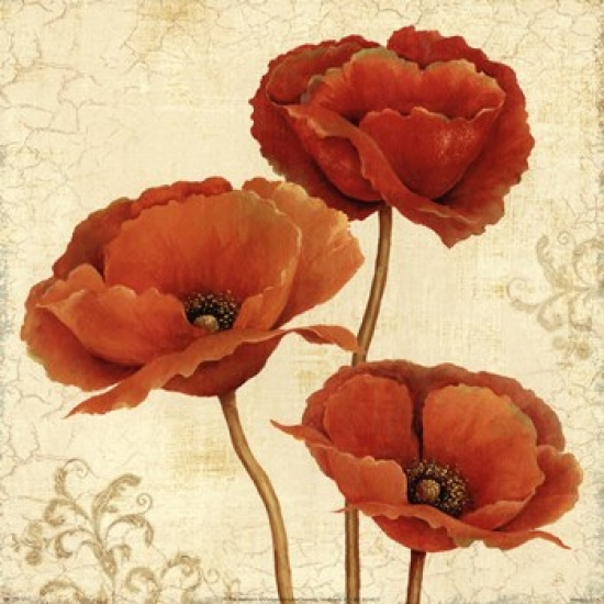 Poppy Bouquet II Poster Print by Daphne Brissonnet (12 x 12)