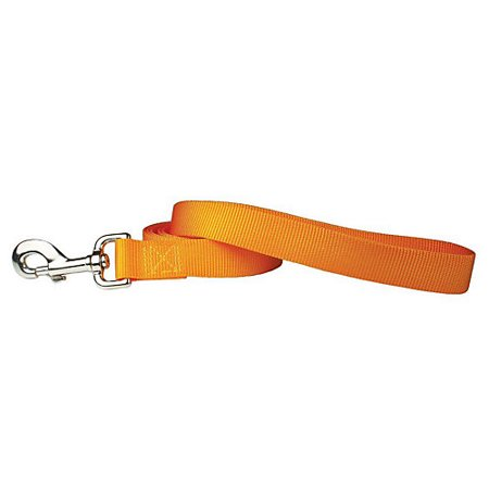 Nylon Dog Leash 6ft x 1in Mango