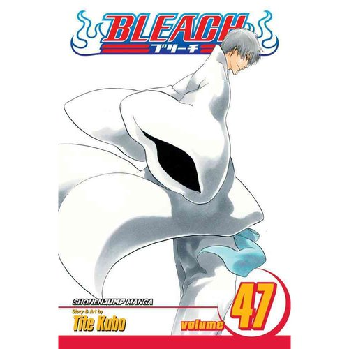 Bleach 47: End of the Chrysalis Age