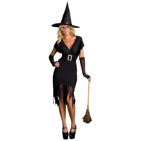 Buy Hocus Pocus Costumes (Black Hocus Pocus Adult Women's Halloween Costume - Extra)