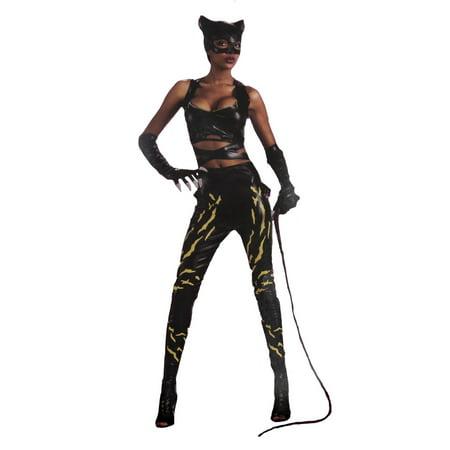 Warner Brothers Halloween 2019 (Rubies Costume Co Warner Brothers DC Comics Catwoman Women?s Female Halloween Costume Top Pants Gloves - S -)