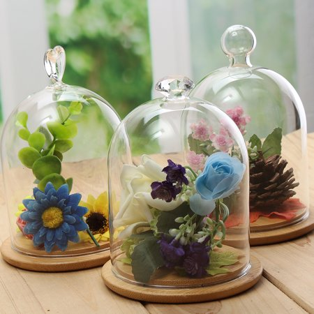 3 Pattern Clear Glass Display Jar Cloche Bell Dome Flower Preserve Vase + Wooden Base For Craft Ornaments Floral Decorations (Square Glass Vases)