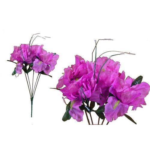 Hikari 60 Silk Iris  Flowers