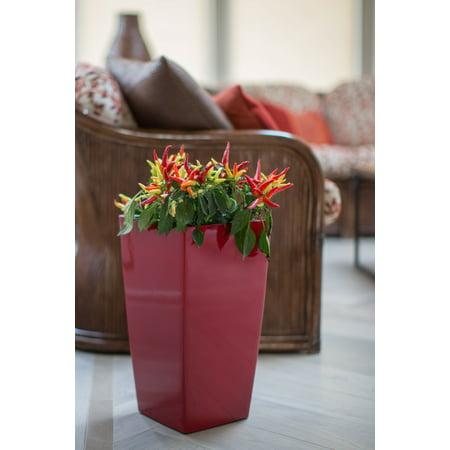 Algreen Modena 22-In. Square Taper Planter, Self-Watering, Glossy Red