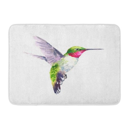 - KDAGR Colorful Air Watercolor Bird Hummingbird Flying Summer Garden Green Artistic Doormat Floor Rug Bath Mat 30x18 inch