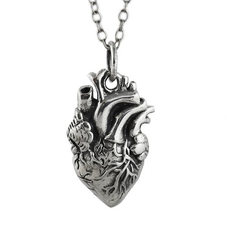 Sterling Silver Lifelike Anatomical Heart Pendant Necklace 18   Chain