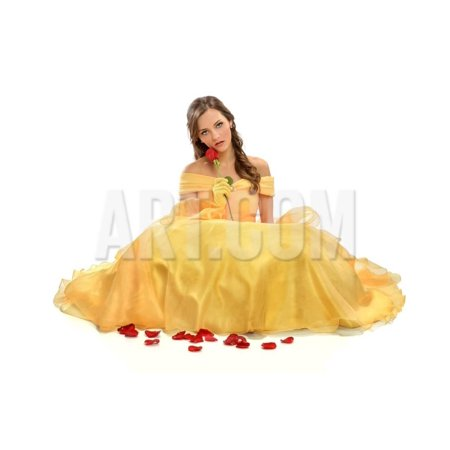 Portrait of Young Woman Dressed in Princess Costume Isolated over White Background Print Wall Art By Gino Santa Maria (Princess And Prince Couple Costumes)