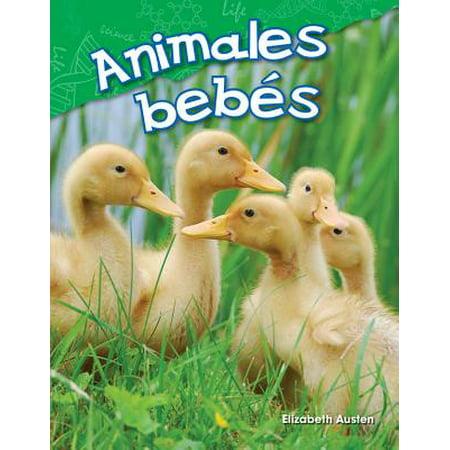 Animales Bebes (Baby Animals) (Spanish Version)