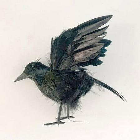 Gardeners Black Lifesize Raven Movie Prop Fake Crow Realistic Halloween Fake Bird Home Garden Decor