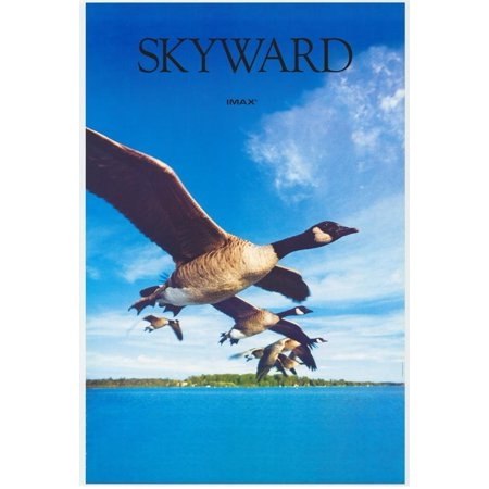 Skyward  Imax  Poster Movie  27X40