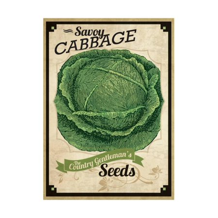 Vintage Cabbage Seed Packet Print Wall Art