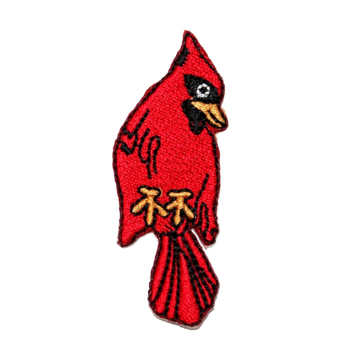 ROBIN Iron On Patch Birds